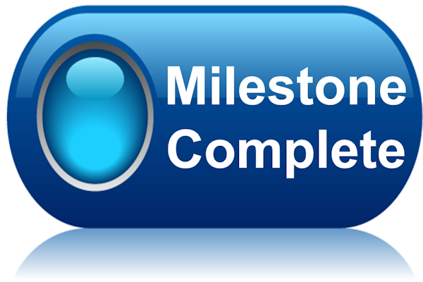 Strategy Execution Milestones